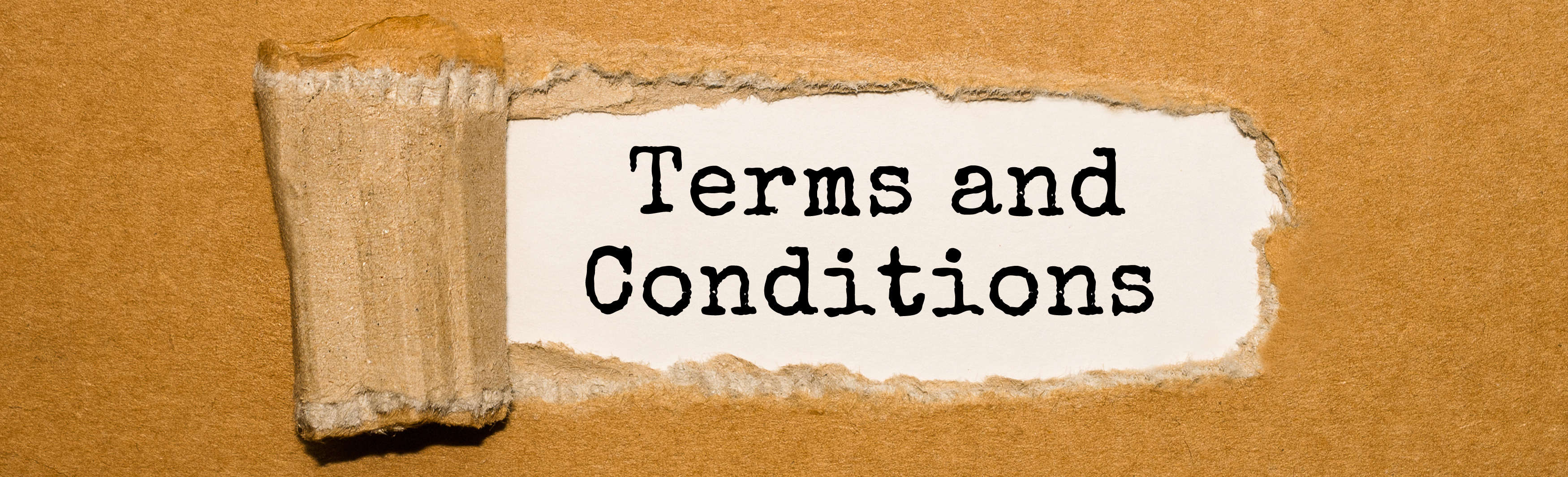 image showing terms and conditions